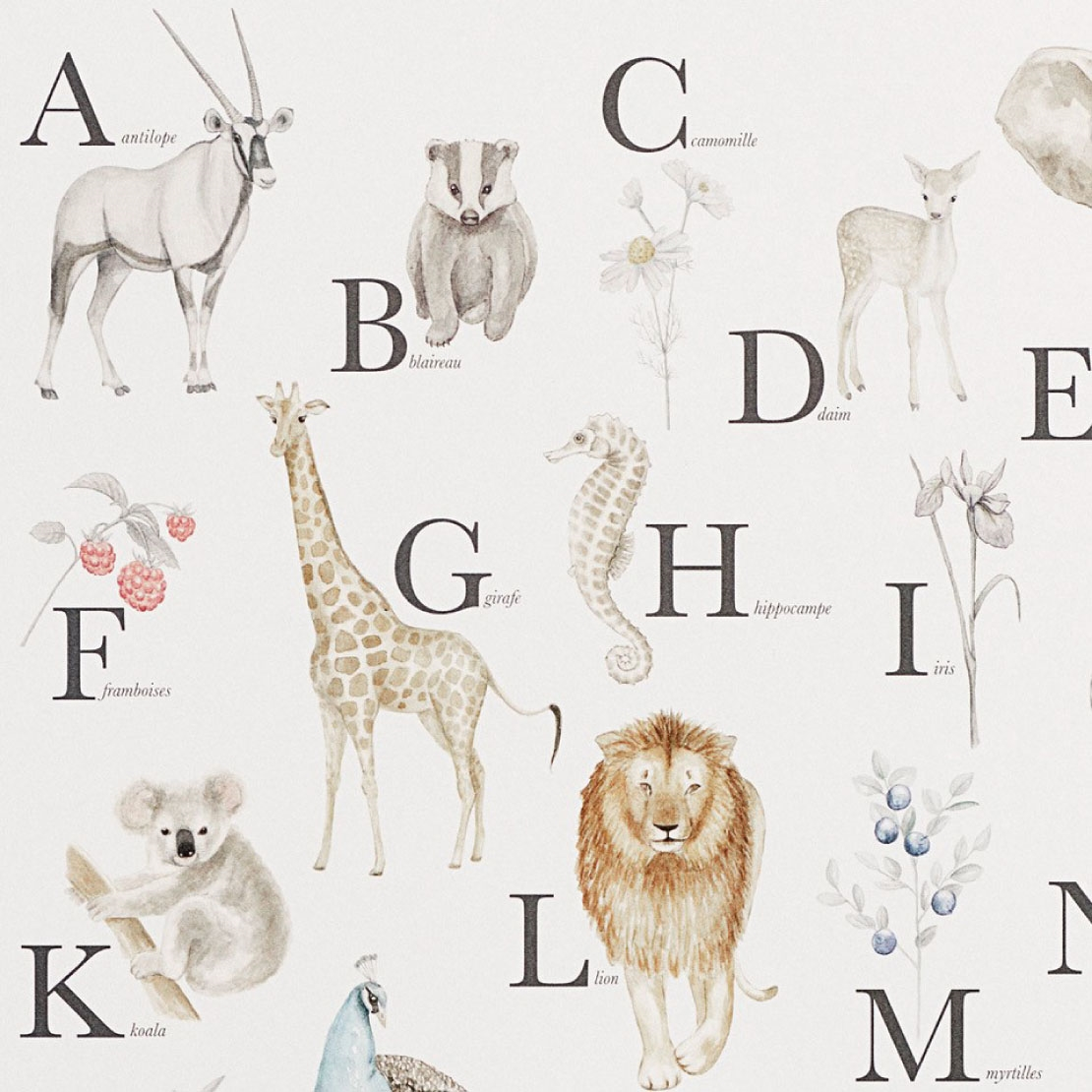 Poster Educatif Abecedaire Camcam Animaux Manipani